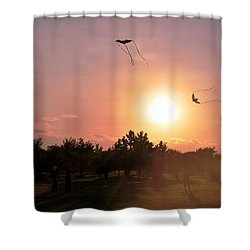 Kites Flying In Park Shower Curtain by Matt Harang