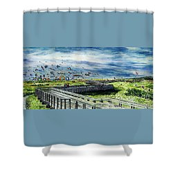 Kites Galore Shower Curtain