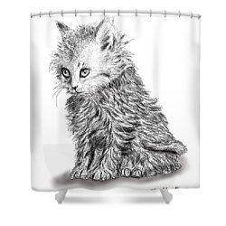 Kitten #1 Shower Curtain