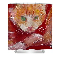 Kitten Shower Curtain by Charles Stuart