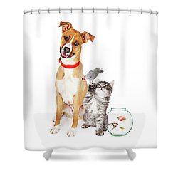 Kitten Dog Bird And Fish Together Shower Curtain