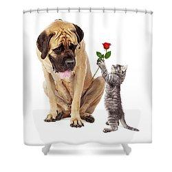 Kitten Handing Big Dog A Rose Flower Shower Curtain