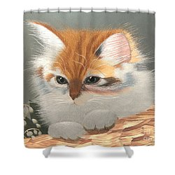 Kitten In A Basket Shower Curtain