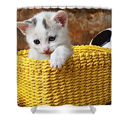 Kitten In Yellow Basket Shower Curtain by Garry Gay