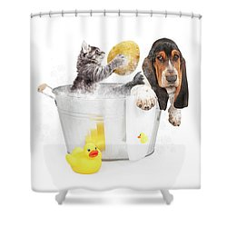 Kitten Washing Basset Hound In Tub Shower Curtain