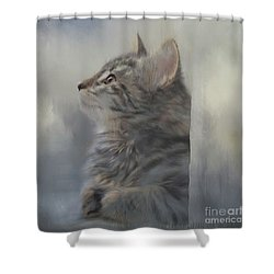 Kitten Zada Shower Curtain by Kathy Russell