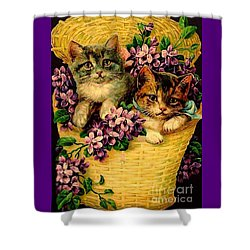 Kittens With Violets Victorian Print Shower Curtain