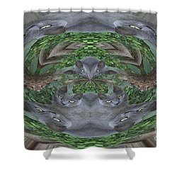 Kitty Abstract  Shower Curtain