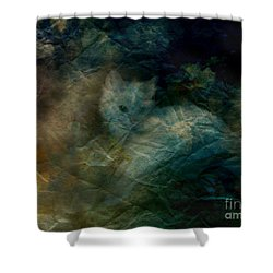 Shower Curtain featuring the photograph Kitty Art Rescue 1st Image  Please See Pg 2 By Sherriofpalmsprings by Sherri  Of Palm Springs