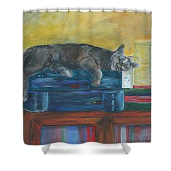 Kitty Comfort Shower Curtain