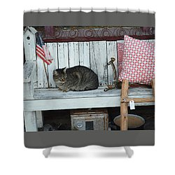 Kitty The Antique Dealer Shower Curtain by Carolina Liechtenstein