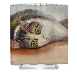 Kitty With Spilled Milk Shower Curtain