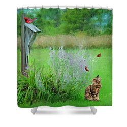 Shower Curtain featuring the photograph Kitty's Fantasy by Mary Timman