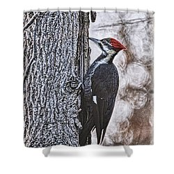 Knock Knock Shower Curtain by Lois Bryan