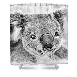 Koala Newport Bridge Gloria Shower Curtain by Remrov