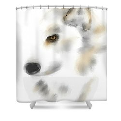 Kodak Shower Curtain