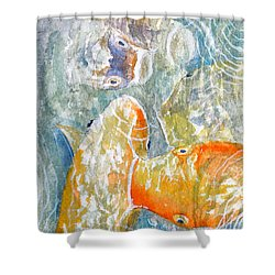 Shower Curtain featuring the painting Koi Carp Feeding Frenzy by Bill Holkham