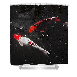 Koi Trio 1 Shower Curtain by Deborah  Crew-Johnson