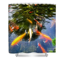 Koi3 Shower Curtain by Roger Lighterness