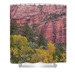 Kolob Canyon Colors Shower Curtain