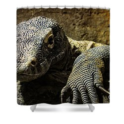 Komodo Dragon Shower Curtain