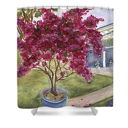 Shower Curtain featuring the painting Kona Bougainvillea by Jamie Frier