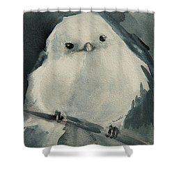 Korean Crow Tit Shower Curtain