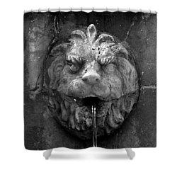 Koreshans Lion Shower Curtain by David Lee Thompson
