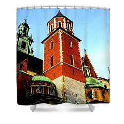 Shower Curtain featuring the photograph Krakow Poland by Michelle Dallocchio