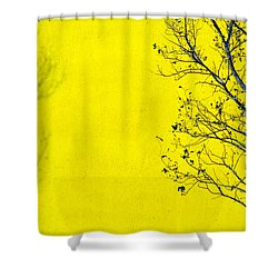 Krishna Shower Curtain