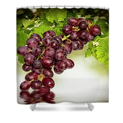 Krissy Gold Grapes Shower Curtain