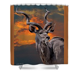 Kudu At Sunset Shower Curtain