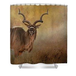 Kudu On Alert Shower Curtain