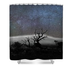 Kumulipo And The Sky Shower Curtain