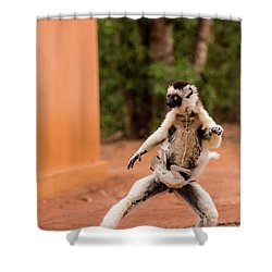 Kung Fu Mom Shower Curtain by Alex Lapidus