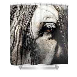 Kyra's Soul Shower Curtain by Lynn Palmer