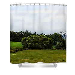 In The Dales Of Yorkshire Shower Curtain