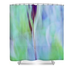 L Epi Shower Curtain by Variance Collections