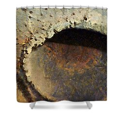 Shower Curtain featuring the painting La Bussola Magia Della Vita by Sir Josef - Social Critic - ART