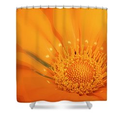 La Fleur D'orange Shower Curtain