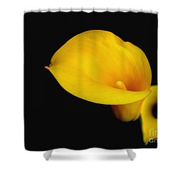 Shower Curtain featuring the photograph la Lilly by Debra Crank