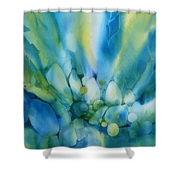 La Lumiere Tombe Shower Curtain by Donna Acheson-Juillet