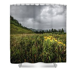La Plata Wildflowers Shower Curtain