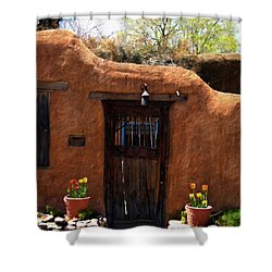 La Puerta Marron Vieja - The Old Brown Door Shower Curtain by Kurt Van Wagner