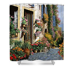 La Strada Del Lago Shower Curtain by Guido Borelli