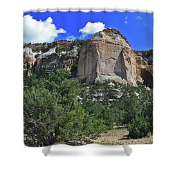 La Ventana Arch Shower Curtain