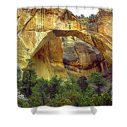 La Ventana Natural Arch Shower Curtain