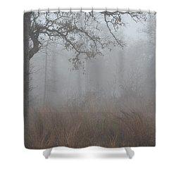 Shower Curtain featuring the photograph La Vernia Fog IIi by Carolina Liechtenstein