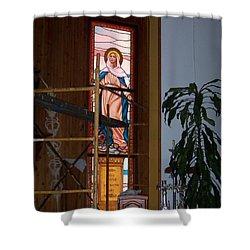La Virgen Milagrosa Shower Curtain