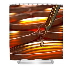 Shower Curtain featuring the photograph Laboratory Petri Dishes In Science Research Lab by Olivier Le Queinec